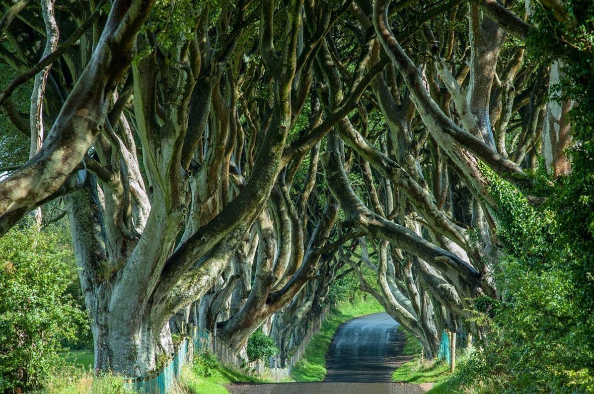 vacanze in irlanda