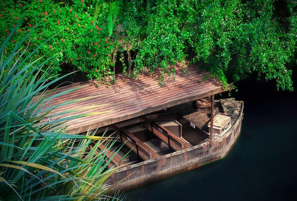 imbarcazione foresta pluviale